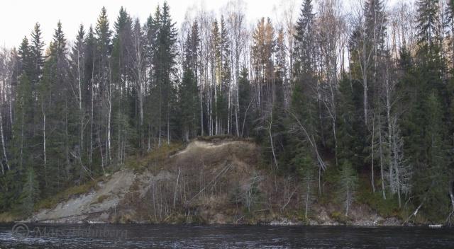 Foto Mats Holmbertg . Erosion vid Stocken. Slutet av oktober 2013.