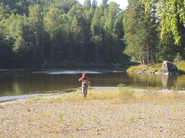 Nedre Prästholmen fotograferad uppströms