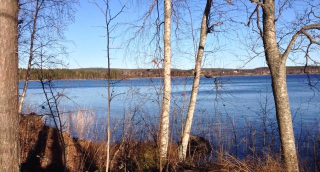 Foto Leo Oras Foto från sjön Öjen, Njurunda, vars vatten via Stångån rinner ut i Ljungan.