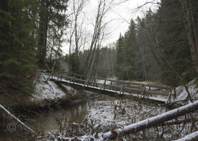 Foto Mats Holmberg. Tunomsbäcken. Bro över Tunomsbäcken.