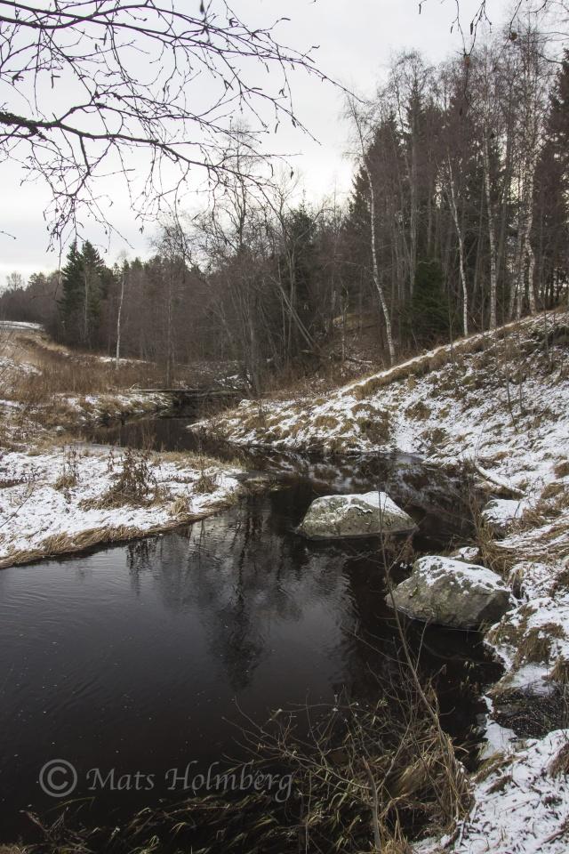 Foto Mats Holmberg. Tunomsbäcken. Tunbyn.