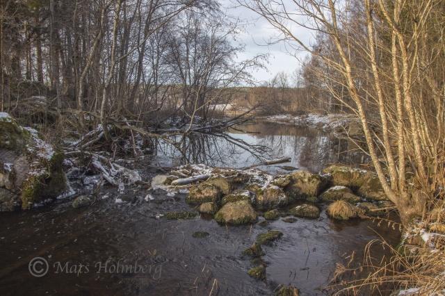 Foto Mats Holmberg. Tunomsbäcken. Vandringshinder. Klingstatjärn.