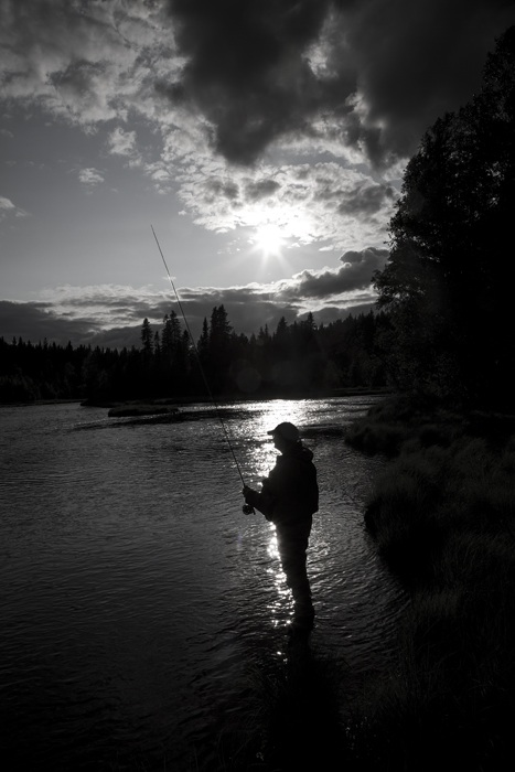 Photo Svanthe Harström Flyfisher in river Ljusnan