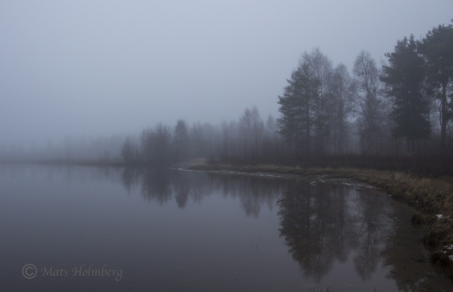 Foto Mats Holmberg Strand längs Lule älv i dimma