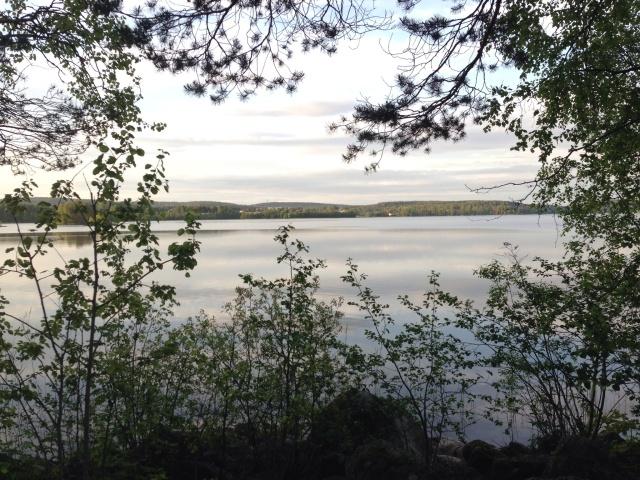 Foto Leo Oras Inom en nära framtid kommer ål och havsöring att få möjlighet att simma ändå upp till sjön Öjen, som tillhör Ljungans vattensystem