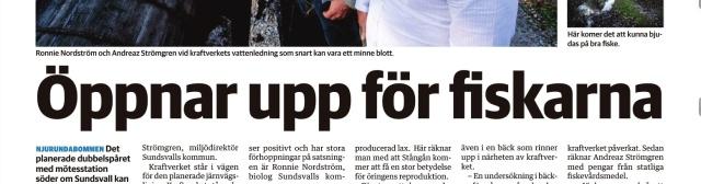 Sundsvalls Tidnings pappersupplaga om Stångån den 13/9 2014